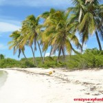 Contoy-Island-in-Mexico-64